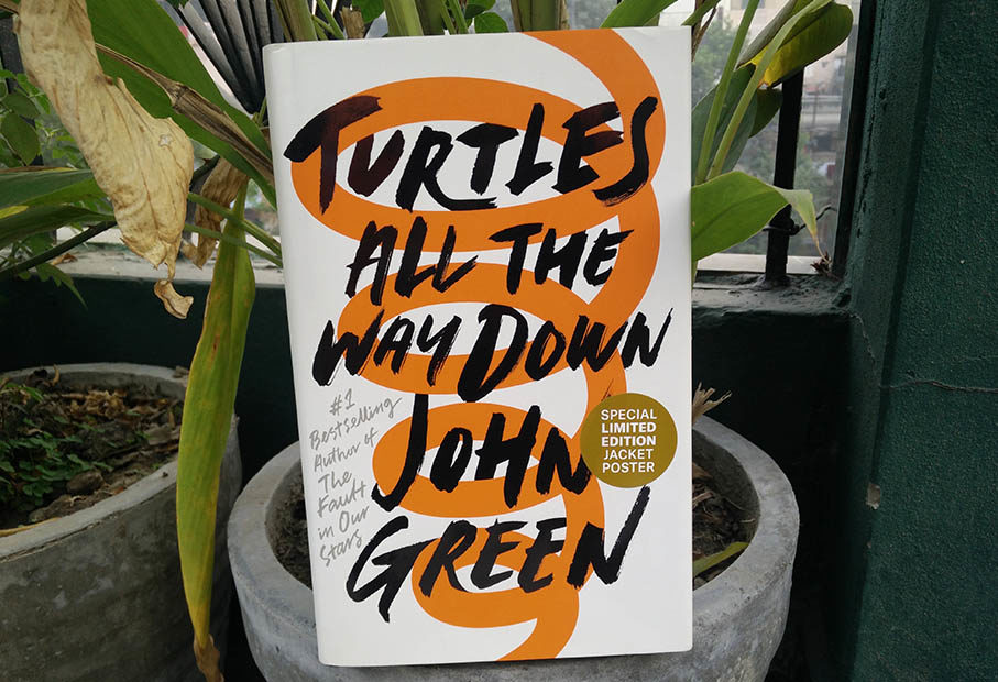 Turtles All the Way Down Review